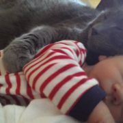 Lucky (our cat) has embraced Micah (our son) as a part of the family.