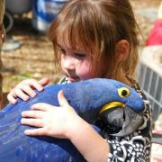 A young girl hugging a bird.