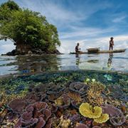 The reefs of Kimbe Bay in the West New Britain Province, Papua New Guinea