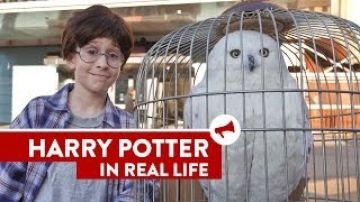 Harry Potter In Real Life - The cutest thing you'll see all day.