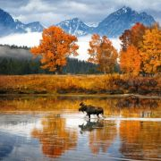 The beauty of autumn in Wyoming is really something.