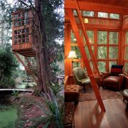 Grown-Up Treehouse in Washington