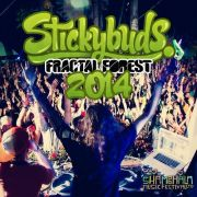 Stickybuds - Fractal Forest Mix - Shambhala 2014