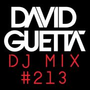 David Guetta Dj Mix #213