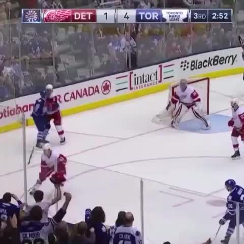 Steve Dangle Vine