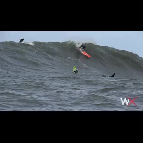 WOMEN CRASH WEDNESDAY: Bianca Valenti Wipes Out at Mavericks
