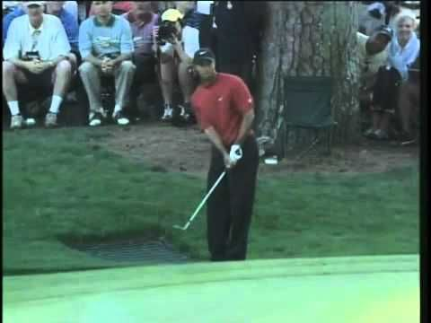 Tiger's chip at the 2005 Masters