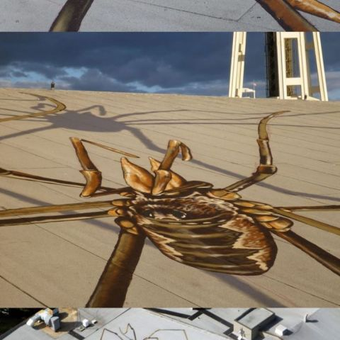 This artist is trolling planes...