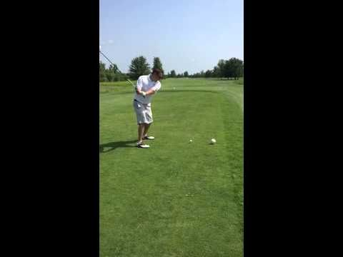 Golfer kills seagull with awful drive