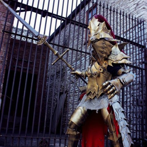 Dragon slayer Ornstein Cosplay