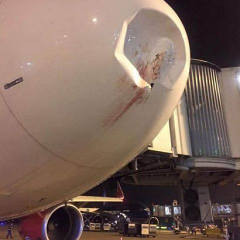 Damage caused by a bird strike on the nose of an Airbus A320.