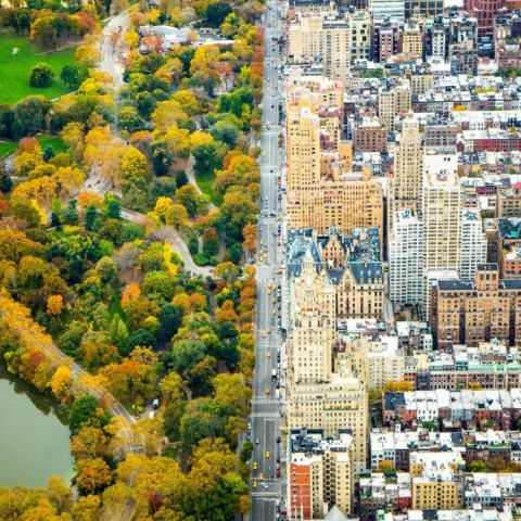 A split of two worlds between the architecture of the city and the green of Central Park, New York