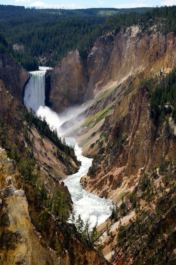 Canyon of the Yellowstone, Wyoming