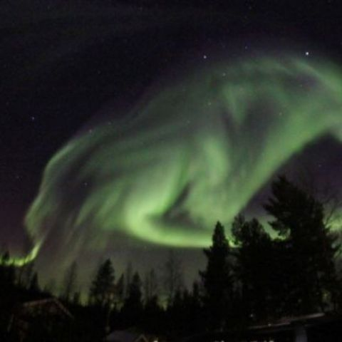 Aurora Borealis in the shape of a wolf. Taken in Pajala, Sweden