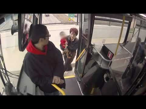Bus driver rescues baby wandering on overpass