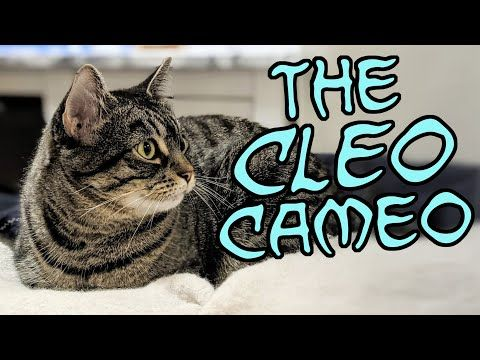 The Cleo Cameo