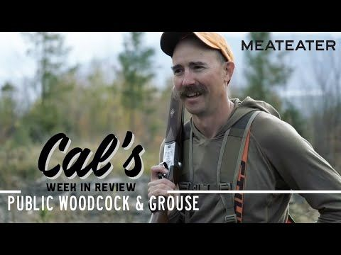 Cal in the Field: Maine -  Private Ground & Public Woodcock & Grouse | S2E04 | MeatEater