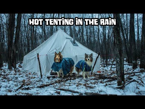 Hot Tenting in the Rain With My Dogs